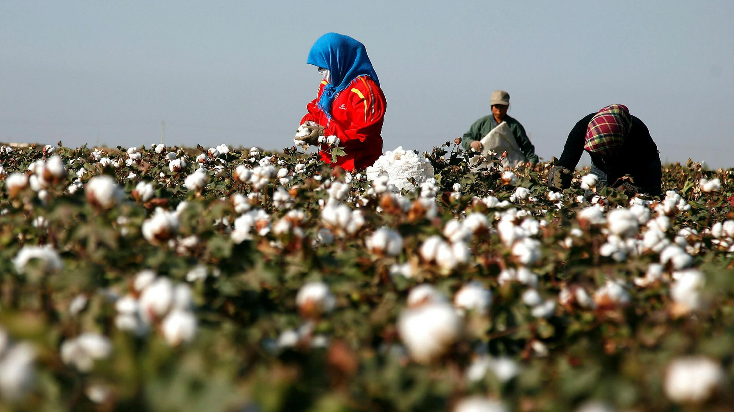As Textile Trade with China Tightens, Uzbekistan is Eager to Emerge